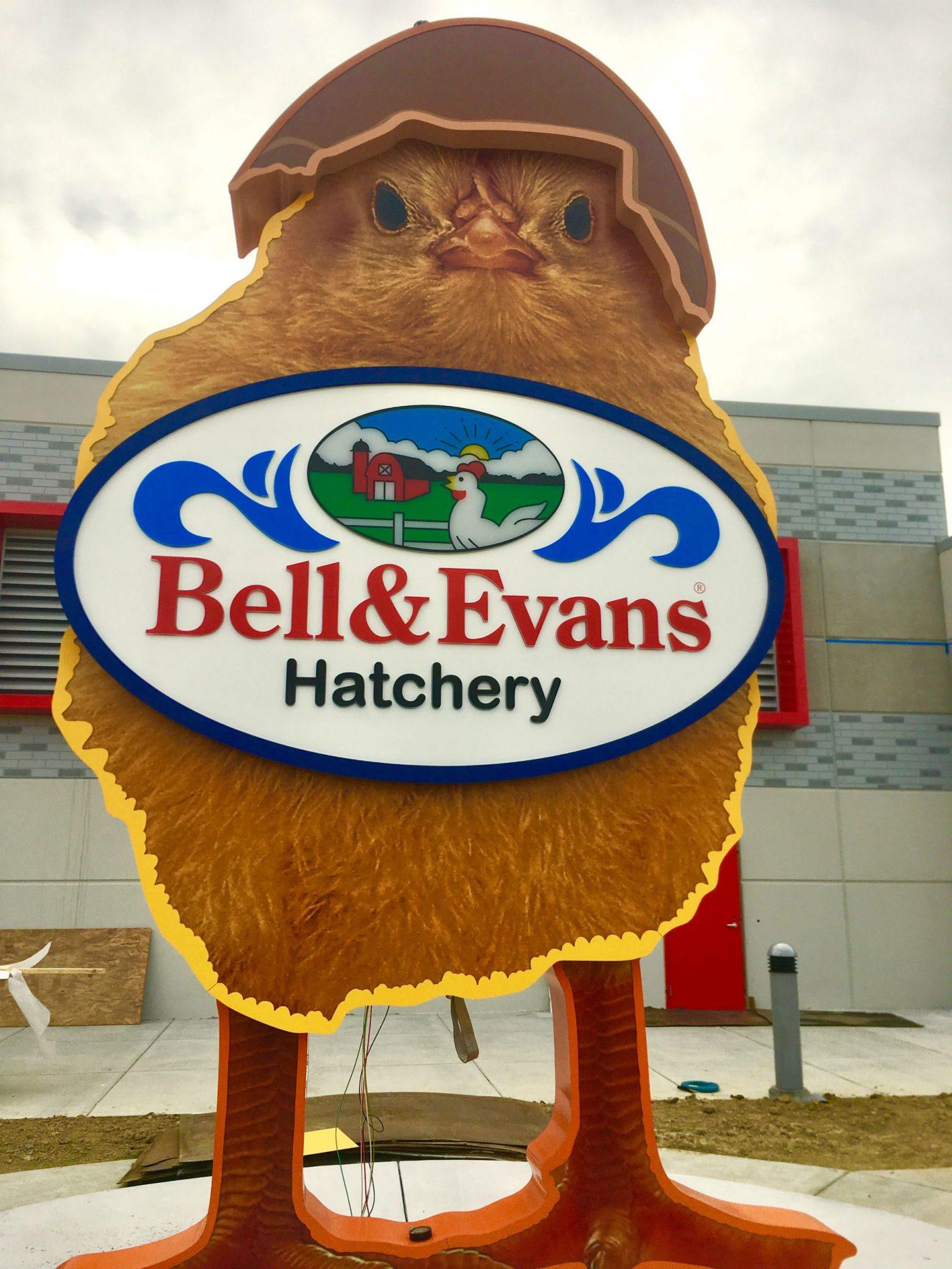 Bell Evans Hatchery