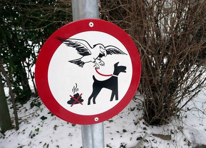 sign showing a bird with a dog on leash